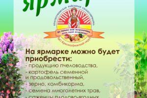 Вакцинация от гриппа и COVID-19 на ярмарке в Приданниково.